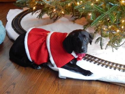 Is Santa here yet?