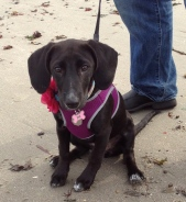 """I'm not so sure about this """"beach"""" thing..."""