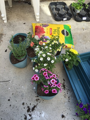Getting the plants ready